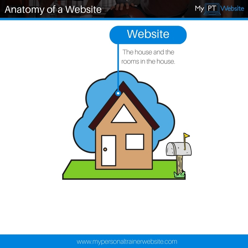 pt website anatomy