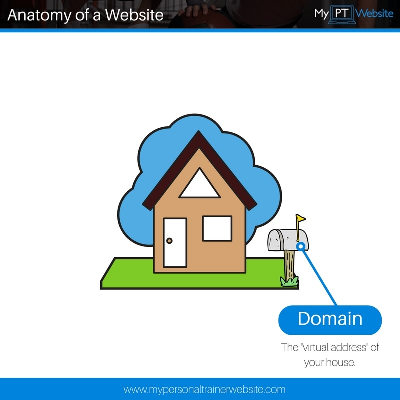 Website Domain